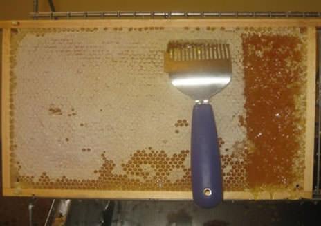 honungshantering1
